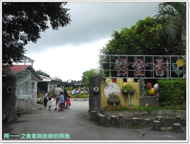 花蓮吉安中園桐花步道鬱金香花園image041