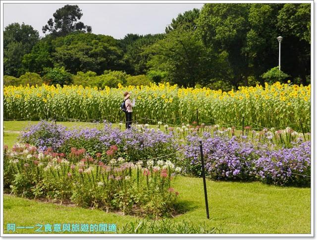 大阪親子景點.日本民家集落博物館.服步綠地.古蹟.老屋image019