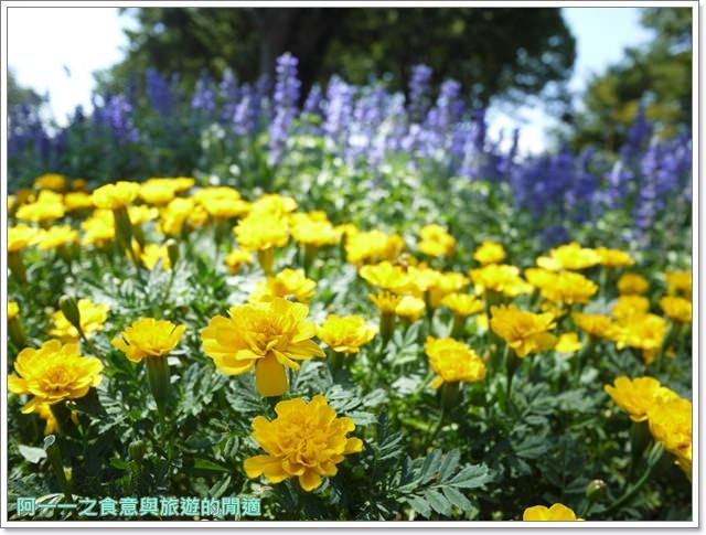 日本江戶東京建築園吉卜力立體建造物展自助image012