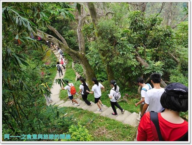 樹林大同山青龍嶺大棟山新北市登山旅遊節劉克襄image028