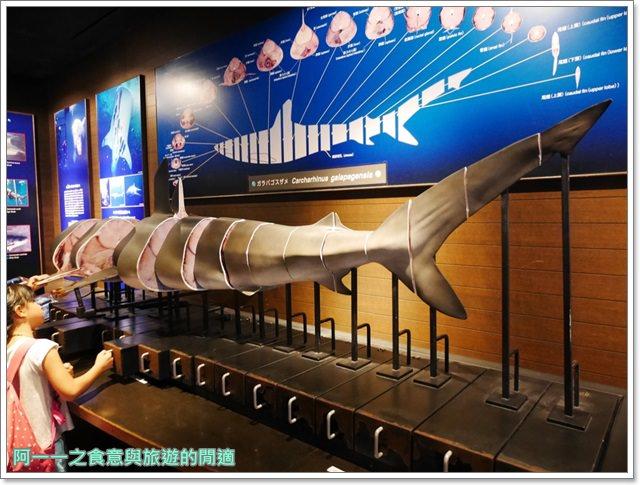 沖繩美麗海水族館.海洋博紀念公園.海豚秀.親子旅遊image046
