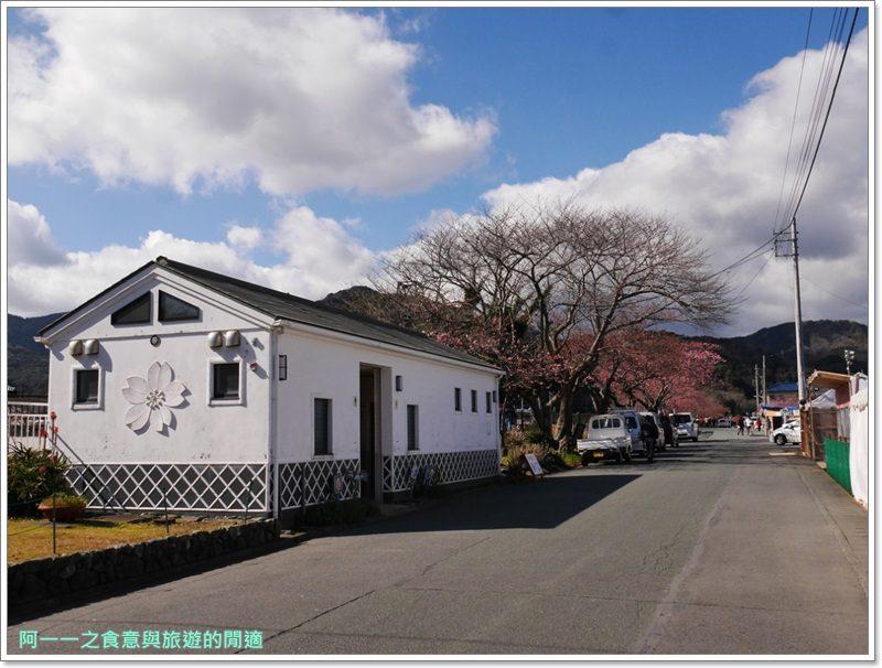 河津櫻.靜岡伊豆.日本自助旅遊.交通.攻略image016