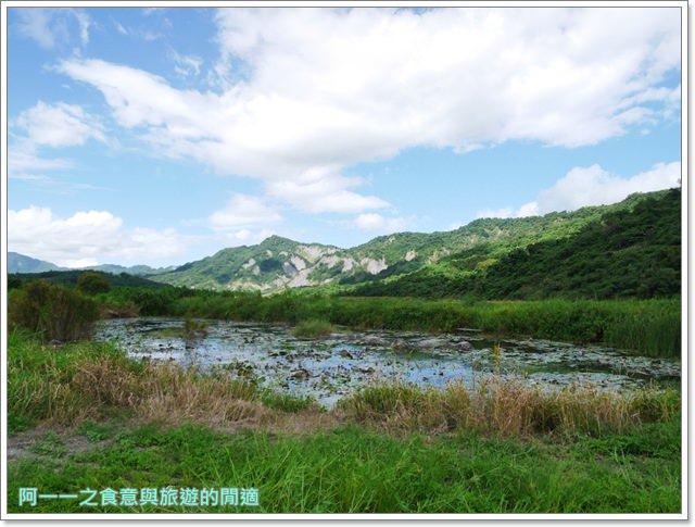 台東.鹿野.二層坪水橋.新良濕地.秘境image028