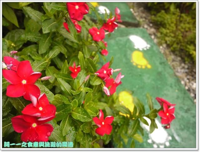 台東住宿民宿田裡的後院鹿野熱氣球image027