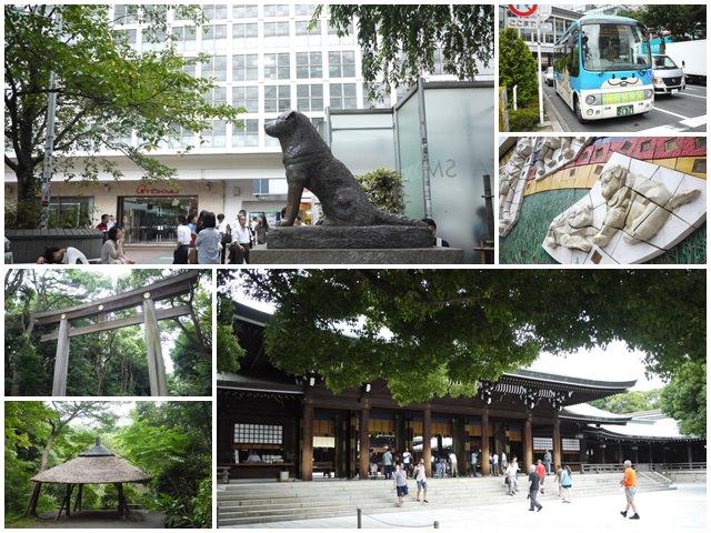 明治神宮原宿澀谷忠犬八公小八御苑日本東京自助旅遊page