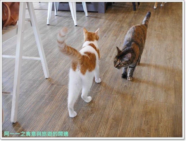 高雄貓餐廳.捷運中央公園站美食.描屋.早午餐.下午茶image024