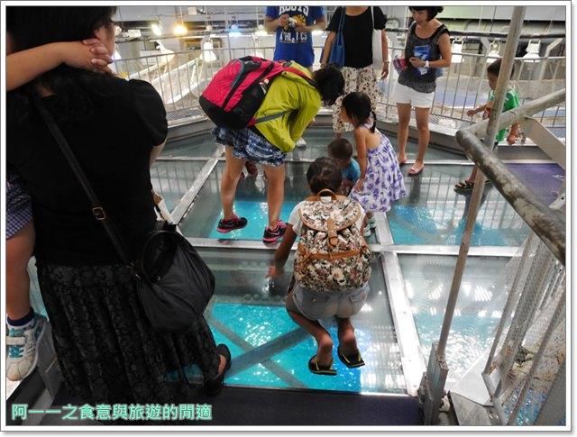 沖繩美麗海水族館.海洋博紀念公園.海豚秀.親子旅遊image054