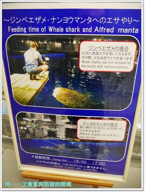 沖繩美麗海水族館.海洋博紀念公園.海豚秀.親子旅遊image056